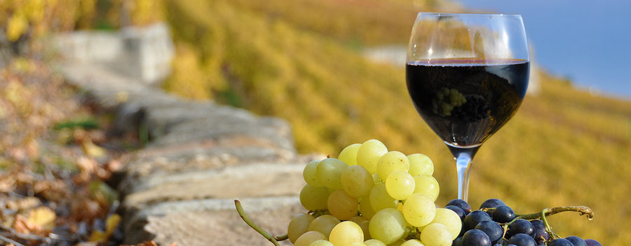 In addition to blood pressure medications and lifestyle changes, some experts recommend drinking wine. But, does red wine lower blood pressure