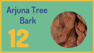 Arjuna tree bark is a great home remedy to lower blood pressure